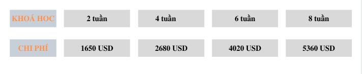 trai-he-anh-ngu-cung-smeag-tro-thanh-cong-dan-toan-cau-2 (2)
